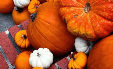 Sunnah Superfoods: The Great Pumpkin