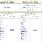 Les regles de grammaire Tome 2 de Medine fr/ar