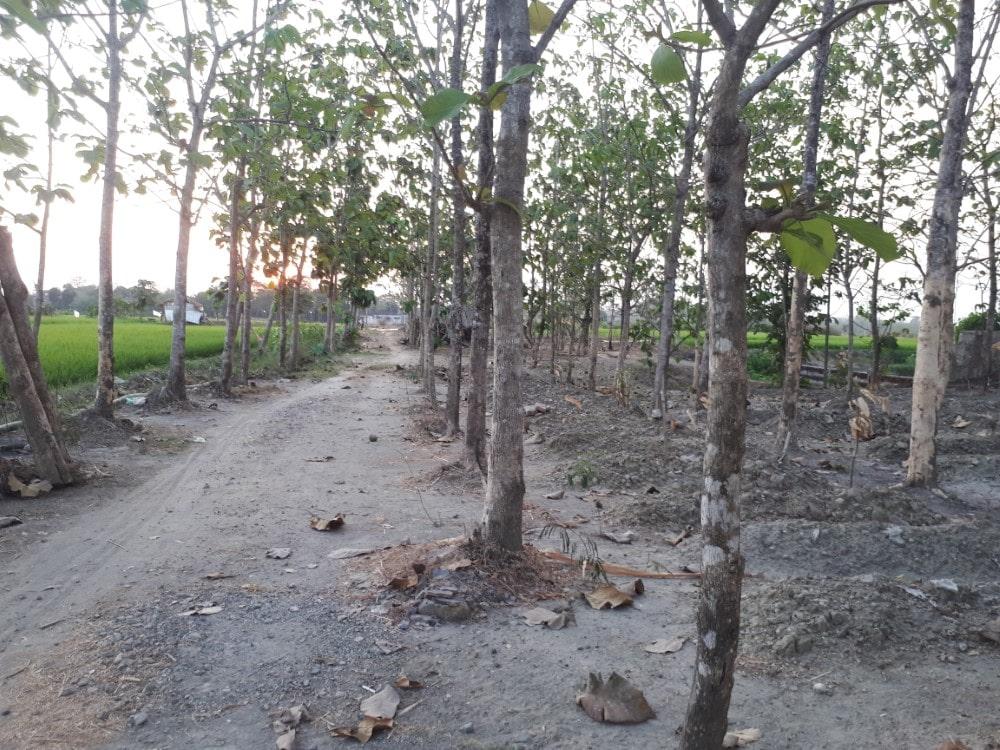 Kuburan Muslim Alastuwo Karanganyar Solo