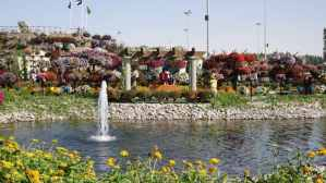 Miracle Garden Dubai One of Dubai's Attractions You Shouldn't Miss