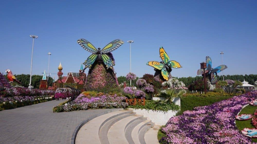 miracle garden dubai1095resized