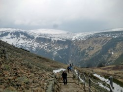 w drodze na Śnieżkę 2