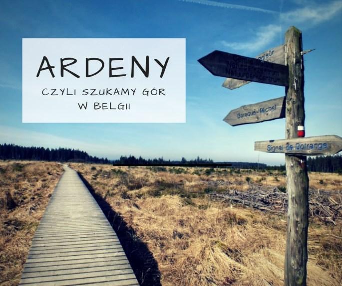 ardeny-szukamy-gor