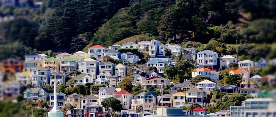 Wellington Coloured Houses
