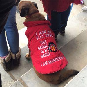 Hund på Broadhurst Park