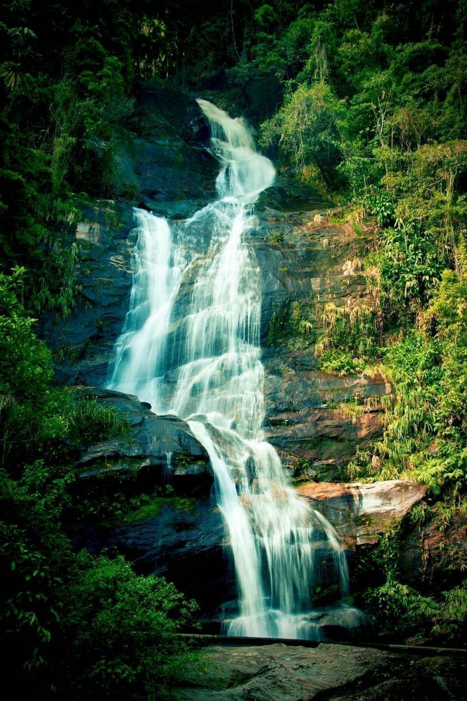 Waterfall in Tijuca National Park in Rio de Janeiro | Brazil Travel Guide
