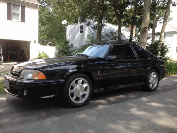 Clean 99 Stock 1993 Ford Mustang Cobra For Sale Mustangforums