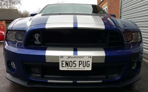 14Shelby5
