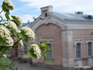 The Old Mint of Finland