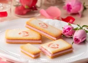 芬芳浪漫的春季期間限定洋菓子✿銀之葡萄「薔薇科的菓子小點 CHOCOLAT Rose」