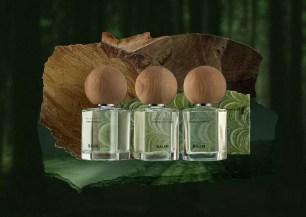 以「與樹木共生」為品牌概念!天然美容保養‧香氛品牌「BAUM」2款木質新香調