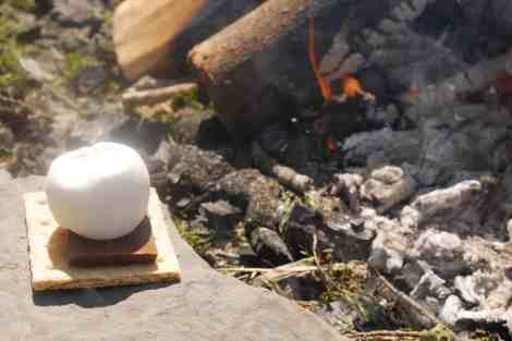 S'mores without a stick