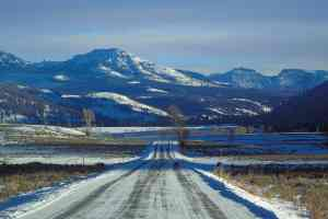 Lamar Roads