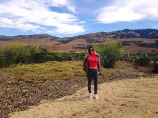 california PCH Road trip