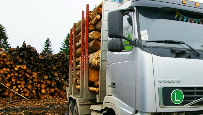 Карелия в основном экспортирует сырье - руду и древесину. Фото: Губернiя Daily