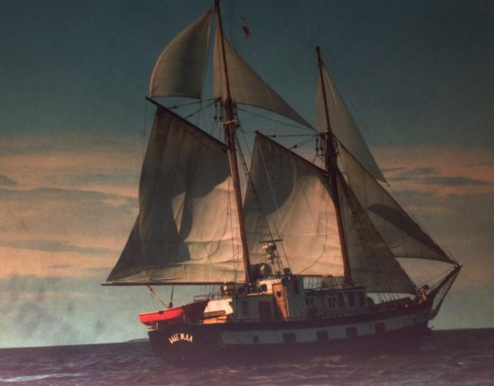 Когда-то на этих яхтах ходили юные карельские моряки. Фото: vk.com