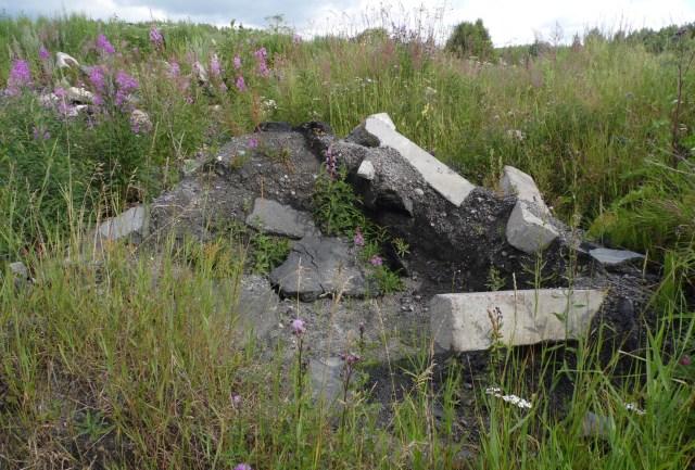 Строительный мусор на Волчьей поляне виден даже сейчас. Фото: Алексей Владимиров