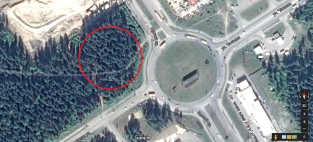 Место рубки на Google maps