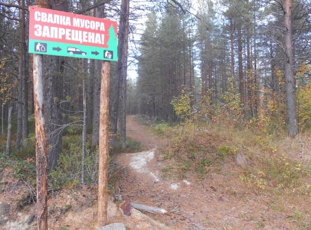 Такими аншлагами проблему незаконных свалок в лесу не решить. Фото: Людмила Капанен
