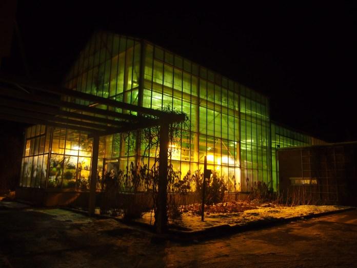 Оранжерея Ботании - тропический оазис среди заснеженных лесов Северной Карелии. Фото: Валерий Поташов