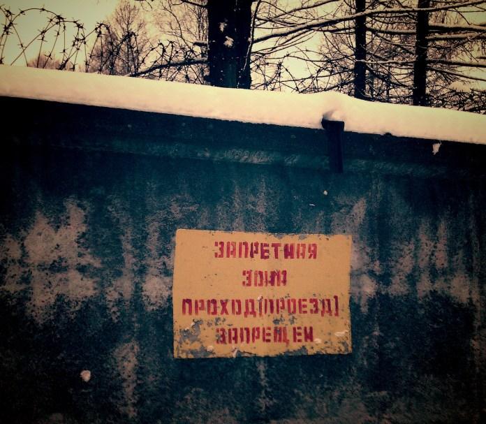 За забором одной из воинских частей Петрозаводска оказалась нелегальная делянка. Фото: Черника