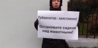 Гражданская активистка Дарья Каликина провела пикет у правительства Карелии. Фото: Алексей Трунов