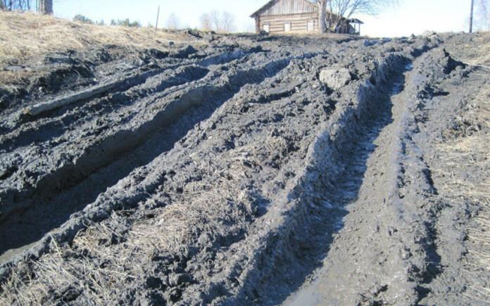 Разбитая лесовозами дорога в старинную заонежскую деревню Фоймогуба. Фото из социальных сетей