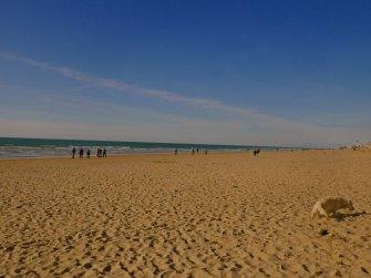 The endless Dutch beach at Egmond.