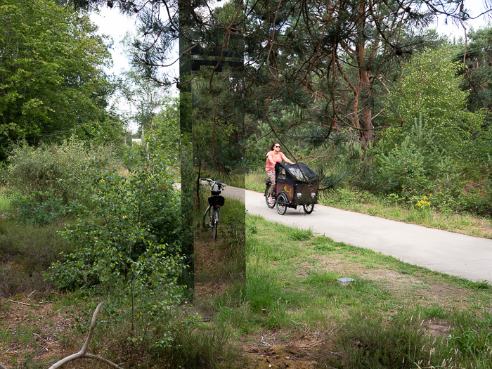By bike through a National Park in the Netherlands to the Military Museum and the Zoo