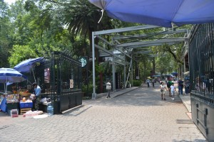 Inroad in Chapultepec park