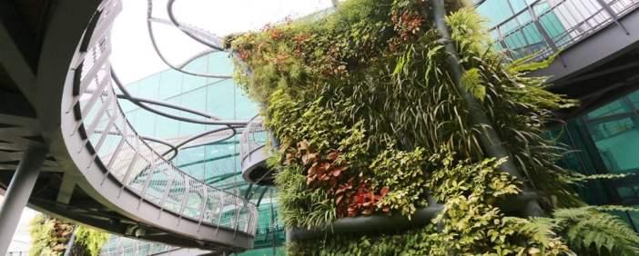 tree garden airport