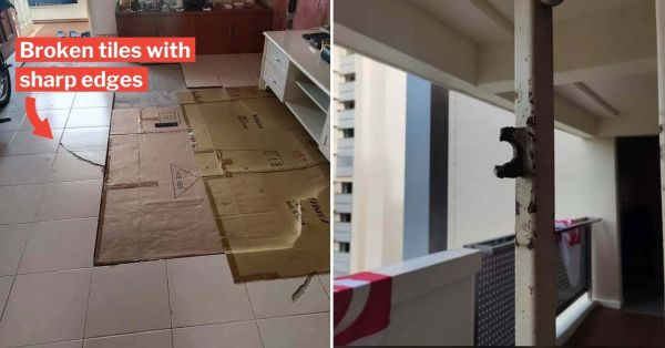 Jalan Besar Resident Claims Rental Flat Damages Not Addressed, MP Denise Phua Appeals To HDB