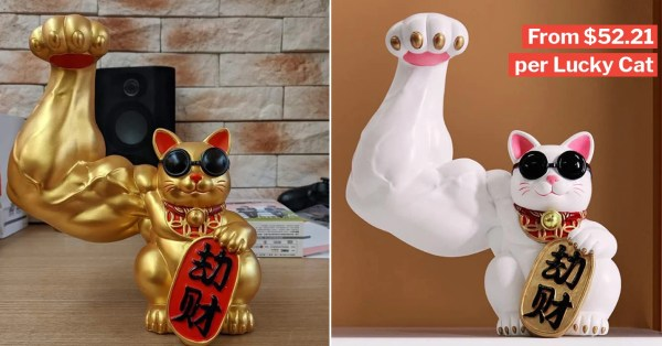 Muscular Fortune Cat Available On Shopee, Brings 'Stronger' Luck For You & The Fam This Year