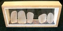 Vitrine #1 - Glass Sentinels