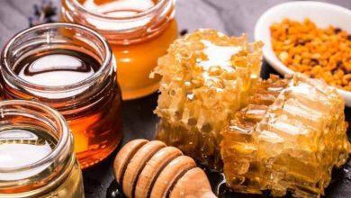 تعرف على افضل انواع العسل واجودها /متألقة