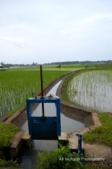 pintu air ini untuk mengontrol debit air dari mata air Leangkassi ke lahan pertanian yang ada disekitarnya.