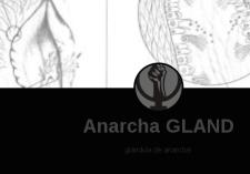 anarcha gland