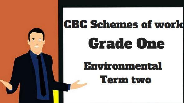 Environmental term 2, grade one, cbc schemes of work