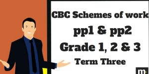 English Grade 3 CBC schemes of work , Term three, free pdf download