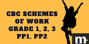 Mathematics cbc schemes of work for Term 1 Grade one 2019