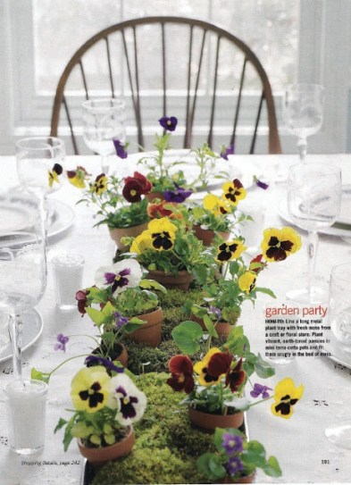 pansy tbalscapes