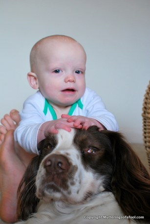 Henry patting Bracken on head
