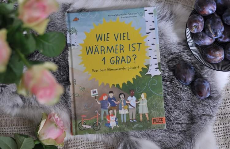 Blogger for Future: Wie viel wärmer ist 1 Grad? – Alles zum Klimawandel