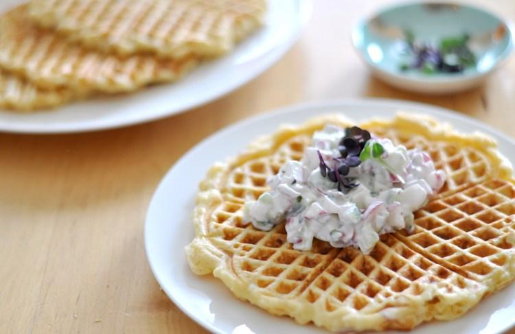 Selleriewaffeln & Co.: 120 schnelle Familienküchenglück Gerichte