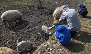 Wellness mit Kind: Muttis Nähkästchen im Reiter's Reserve in Bad Tatzmannsdorf