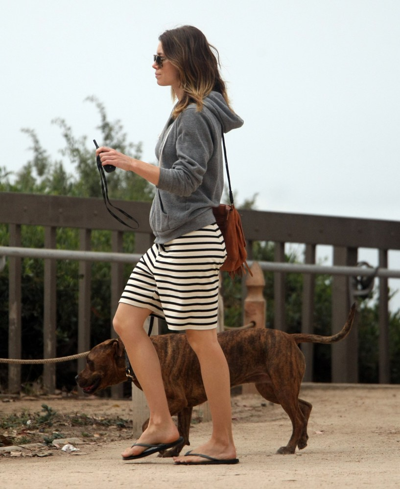 Jessica Biel walks her dog (1/6)