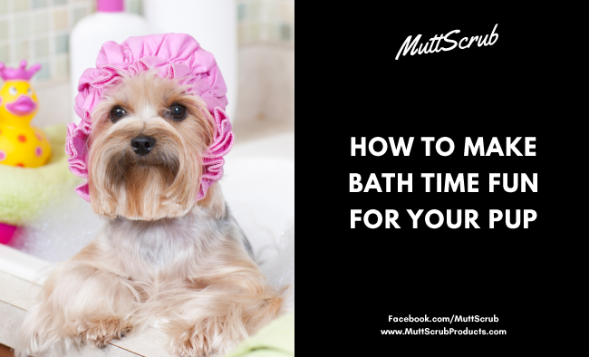 How To Make Bath Time Fun For Your Pup
