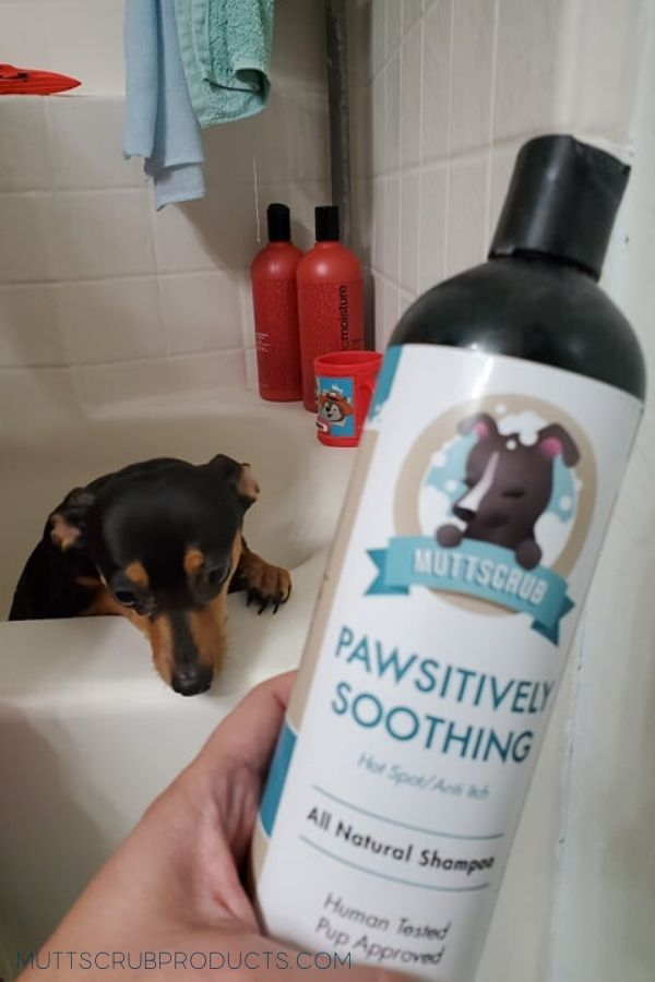 That's My MuttScrub Shampoo