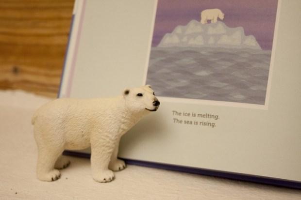 nanuk the ice bear_660_v
