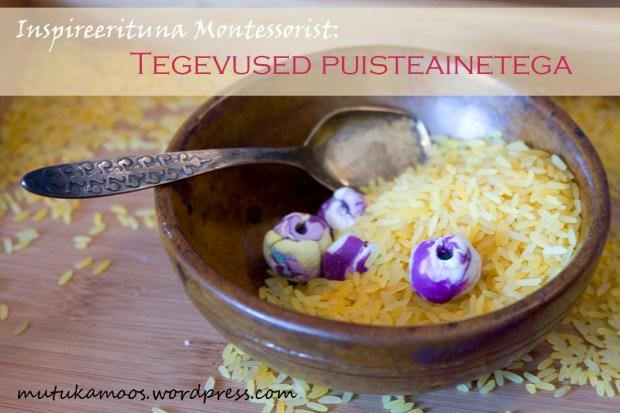 montessori puisteained3